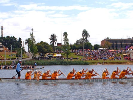 Jacaranda Dragon Boat Races