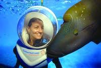 Sunlover Reef Cruises Seawalker Helmet Dive