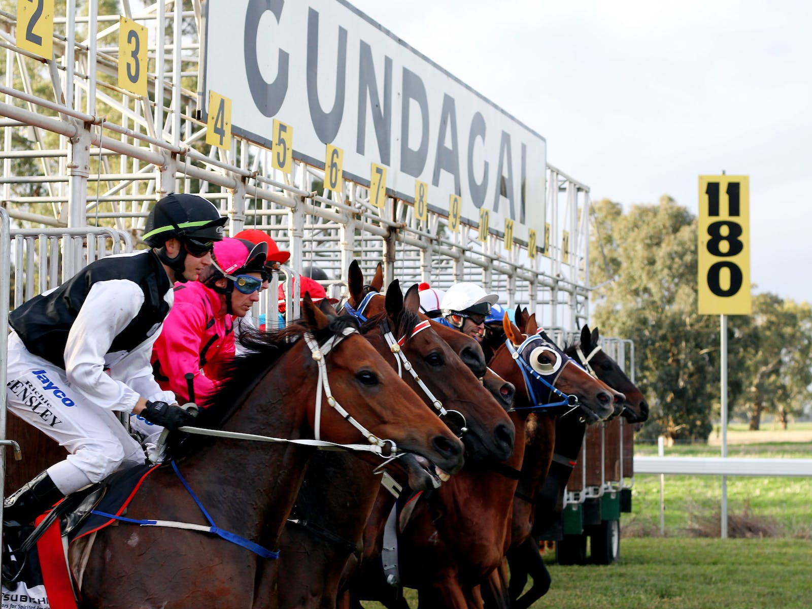 Image for Snake Gully Cup Carnival