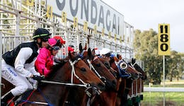 Image of the event 'Snake Gully Cup Carnival'