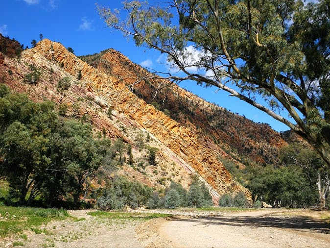 3 Day Tour  Discover Central Flinders
