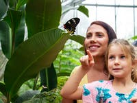 mother and daughter at the australian butterfly sanctuary kuranda