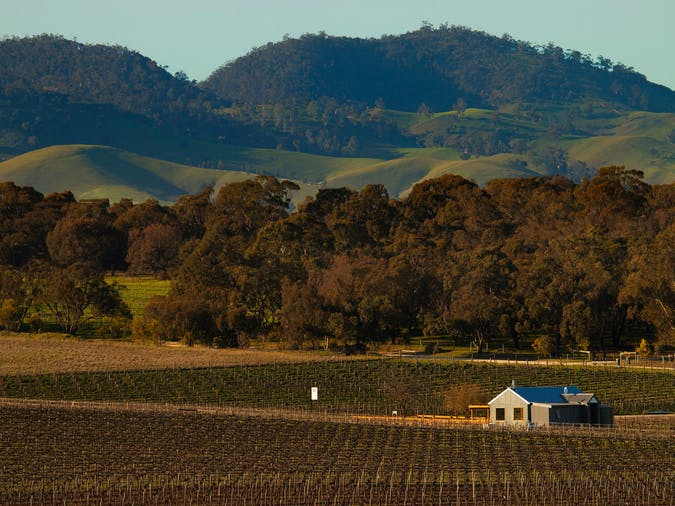 Hayes Family Wines