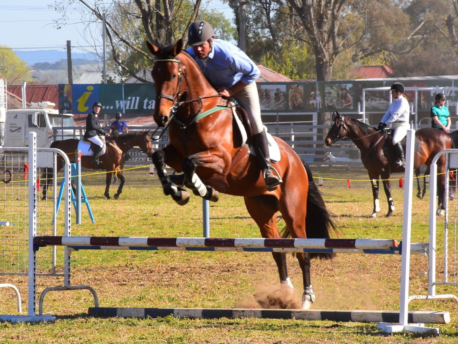 Image for Glen Innes Pastoral and Agricultural Show