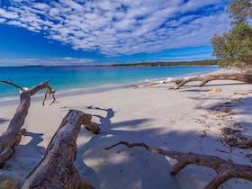 Scottish Rocks Beach