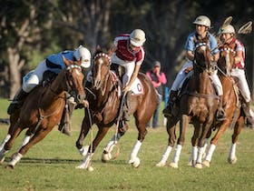 Barastoc Interstate Polocrosse Series and Shell Cup Carnival