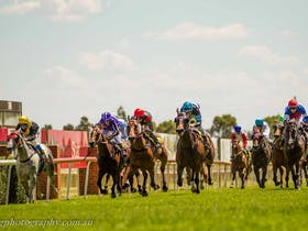Daily Liberal Melbourne Cup Day Race Meeting