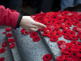 Remembrance Day Service Cover Image
