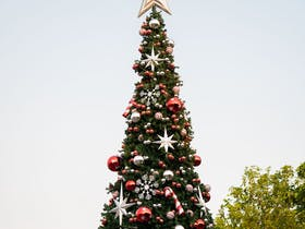 Blacktown Christmas Concert Cover Image