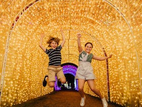 Christmas Lights Spectacular New Year's Eve at Hunter Valley Gardens Cover Image