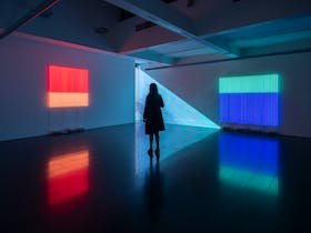 A woman in shadow stands between two coloured neon artworks and their reflections on a shiny floor
