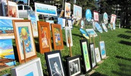 Image of the event 'Harbourside Artists - Open Air Exhibition'