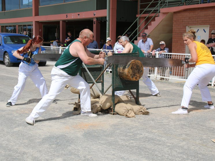 Woodchopping in saw racing will be able to be watched over the weekend.