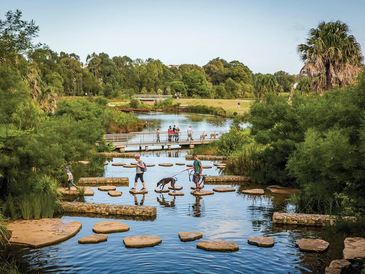 Family enjoying the picturesque wetlands located in the award-winning Sydney Park, St Peters