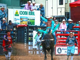 Cooma Rodeo