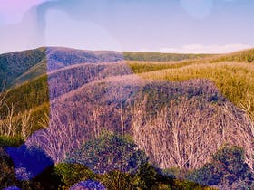 An image of a landscape features hues of yellow and purple and a over saturated blob in the middle