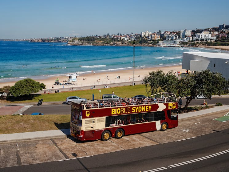 Big Bus Sydney at Bondi Beach