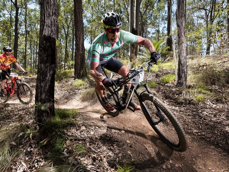 Races on course at the Jetblack Wild Wombat.