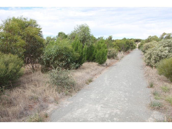Lomandra Walking Trail