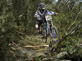 Rocky Trail Gravity Racing Weekend Thredbo