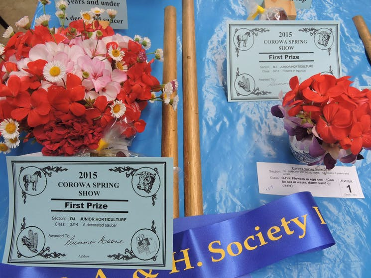 Corowa Pastoral Agricultural and Horticultural Show
