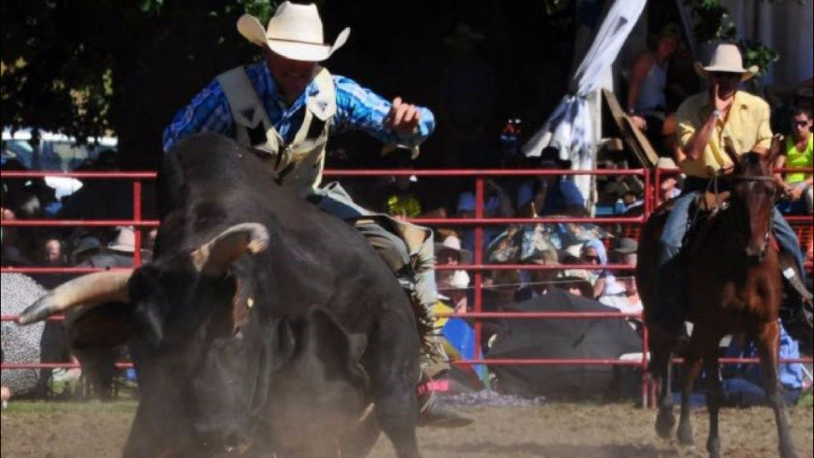 Image for Tumbarumba Rodeo