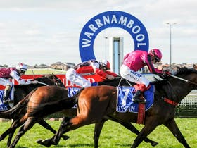 Warrnambool May Racing Carnival