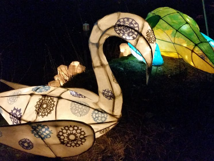 Lanterns made by Tumut High students