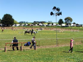 The Camperdown Show