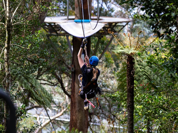 Zipline Tour - flying to the cloud station