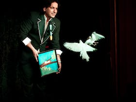 An Intimate Evening of Magic: Dinner and Show