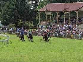 Tumut Derby Day Cover Image