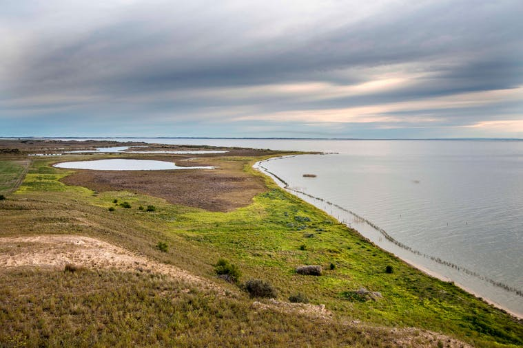 Secrets Of The Coorong