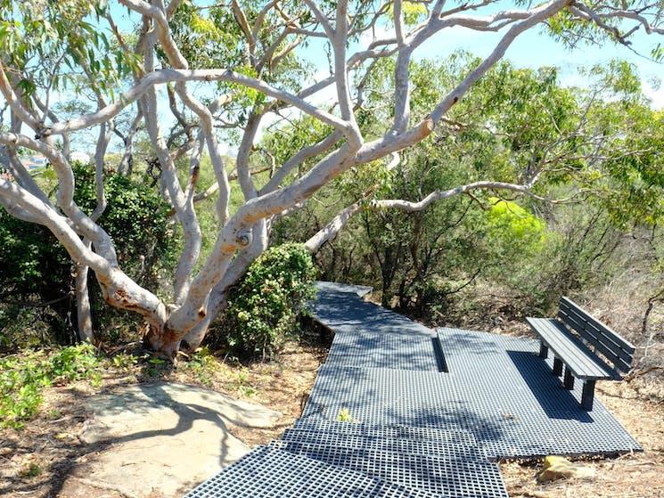 Malabar Headland National Park Western Escarpment Walking Track. Credit: OEH NSW