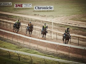 2016 Wangaratta Motor Group Melbourne Cup Day Races