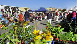 Image of the event 'Maclean Community Monthly Markets'