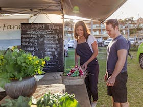 Farmers Market Each Wednesday @ Surf Beach