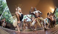 Rainforestation Pamagirri Aboriginal Dance experience