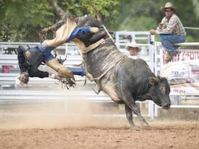 The Chillagoe 3B event will be held in October. It kicks off with a barrel race for all ages, fast horses and gutsy competitors completing a clover leaf pattern in