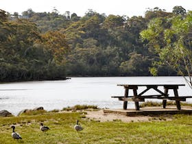 Davidson Park picnic area and boat ramp