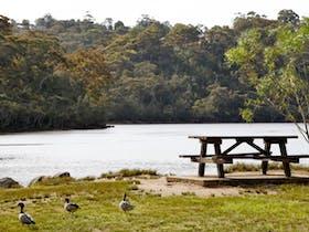 Davidson Park picnic area and boat ramp