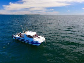 Yamba Fishing and Charters