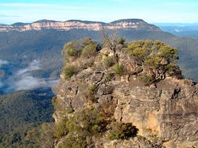 Mount Solitary walking track