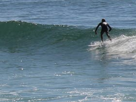 Ballina Surf School