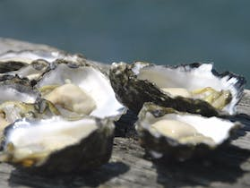 Jim Wilds Oyster Service