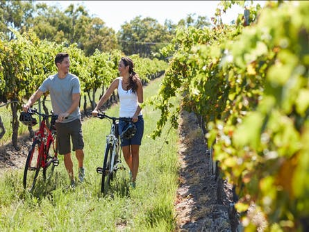 Cycle and Stars - your wine and wheels weekend getaway!