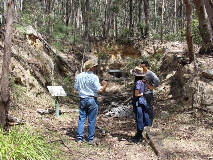 Newnes Shale Oil Refinery Ruins Walking Tour