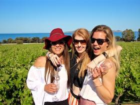 Award winning winery visit overlooking Boston Bay