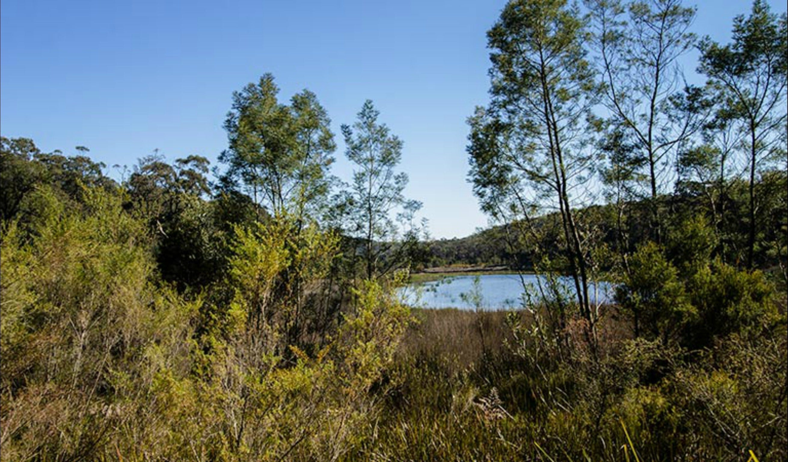 Thirlmere Lakes walking track | Sydney, Australia
