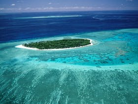 1770 Reef Tours Great Barrier Reef Eco Tours